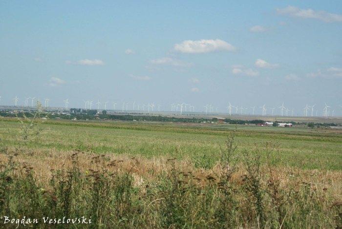 Dobrudjan windmills