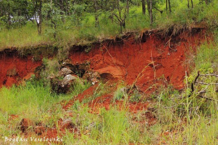 Reddish soil