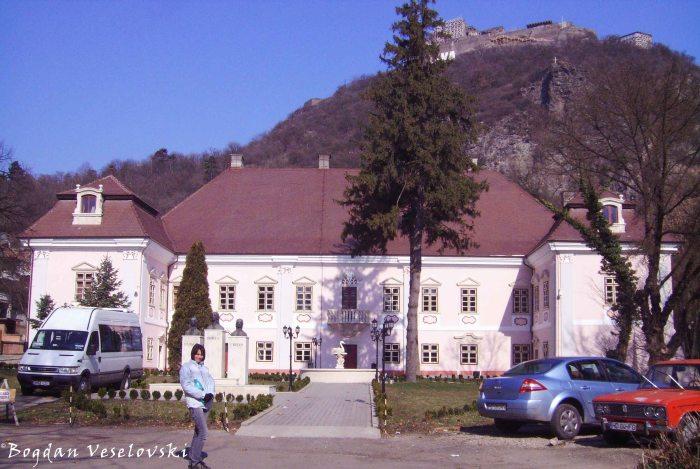 Magna Curia Palace