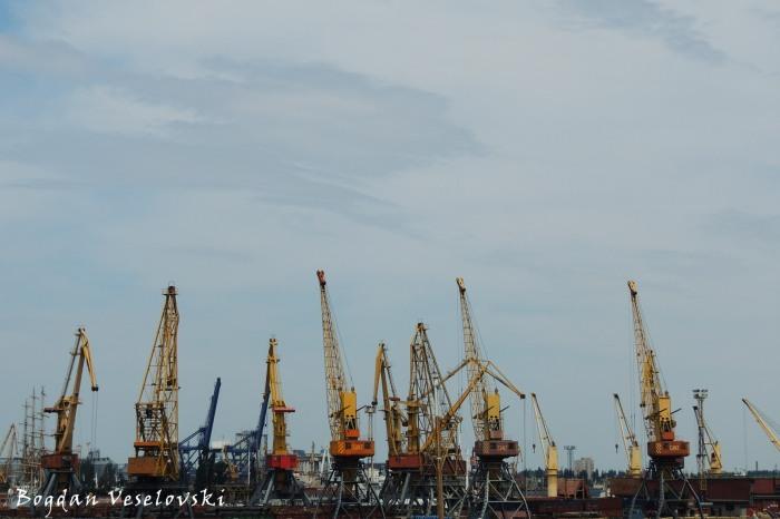 Cranes in Odessa Port