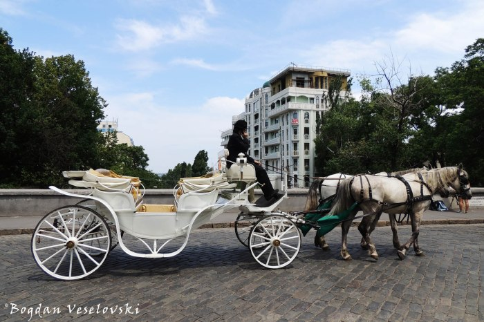 Carriage (Карета)