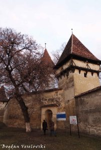 Fortified Church in Cincsor