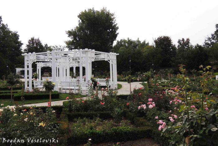 Parcul Rozelor (Roses Park)