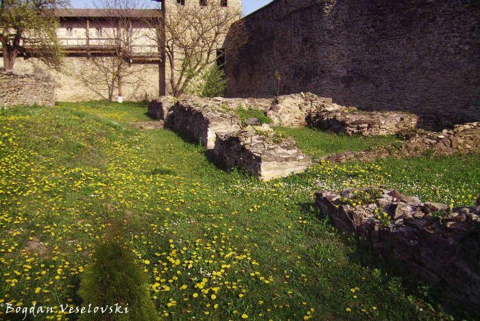 Ruins inside Probota Monastery
