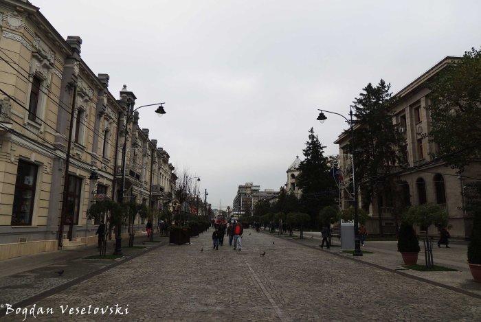 Ștefan cel Mare Boulevard