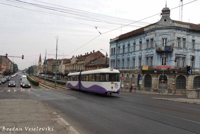 Tram in Timișora