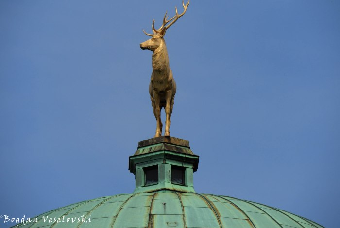 The Golden Stag of Dome of the Art