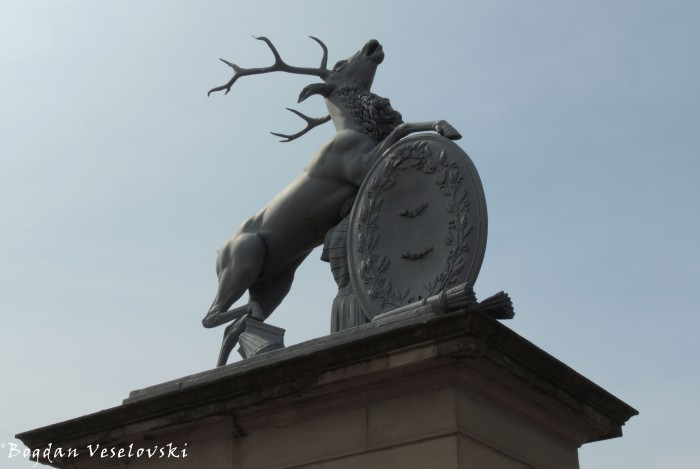 Stag guarding Neue Schloss' entrance