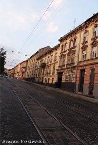 Mechnykova Street