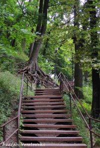 Stairs towards Lviv High Castle