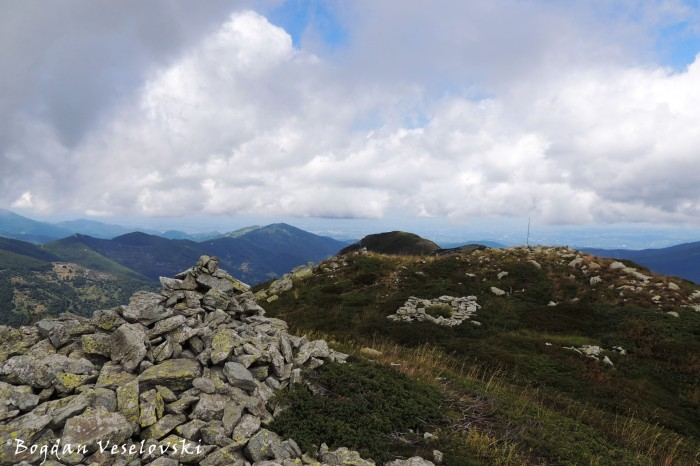 View from Monte Grosso