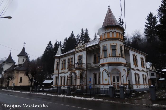 G. T. Kirileanu Library, Vatra Dornei