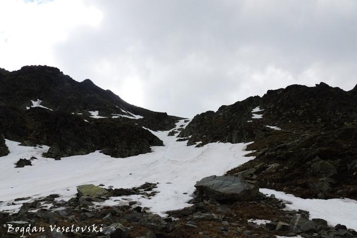 Snowy Parâng