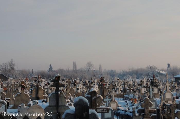 Chitila II Cemetery