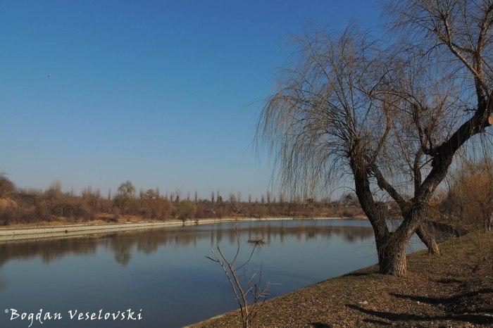 Colentina River Bank
