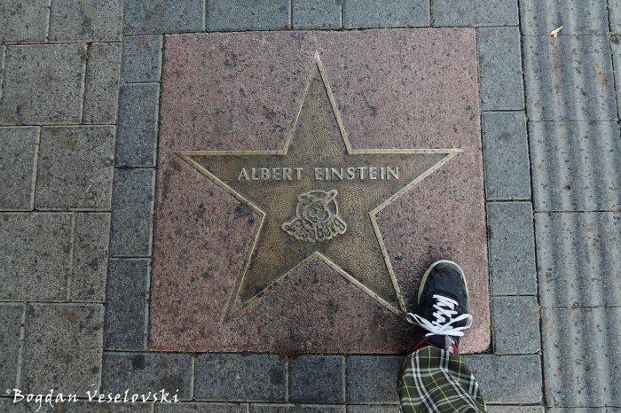 Liseberg Walk of Fame, Gothenburg - Albert Einstein