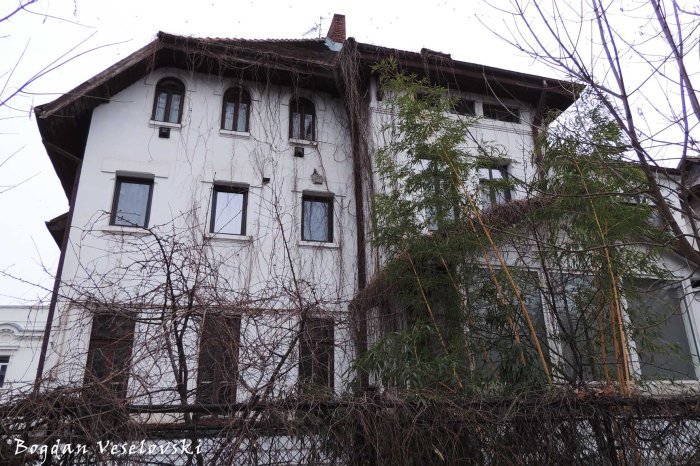 3, Dumbrava Roșie Str. - House seen from Ion Voicu Park / Ioanid Garden