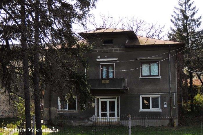 28, Armand Călinescu Str. - Poenăreanu House