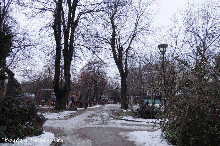Grădina Icoanei Park