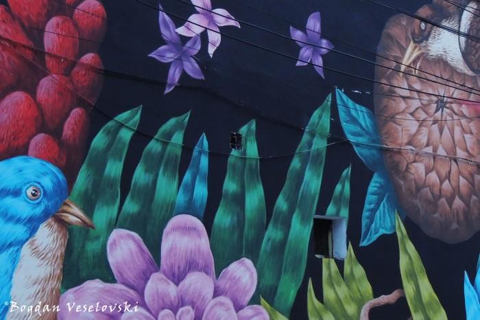 Street Art, Arthur Verona Street