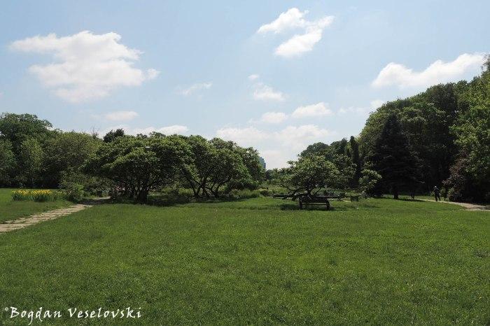 Herăstrău Park