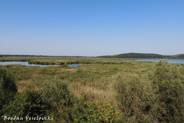 Природен резерват Сребърна (Srebarna Nature Reserve)