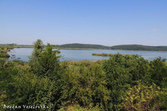 Lake Srebarna