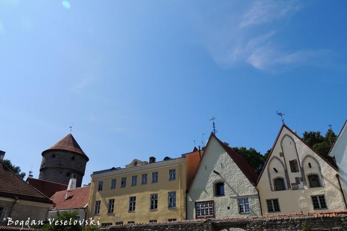 Rüütli street & Kiek in de Kök, Tallinn