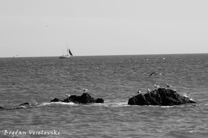 Black Sea at Balchik