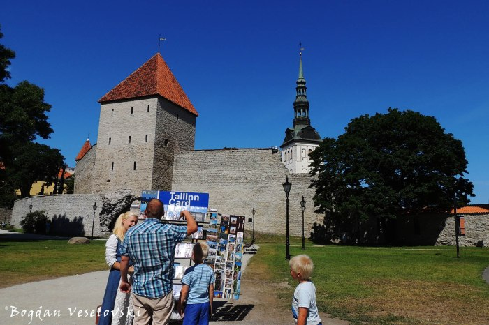 Tallinna linnamüür - Neitsitorn & Niguliste kirik (Walls of Tallinn - Virgin's Tower & St. Nicholas' Church, Tallinn)