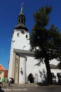 Toomkirik - Tallinna Neitsi Maarja Piiskoplik Toomkirik (St. Mary's Cathedral, Tallinn)