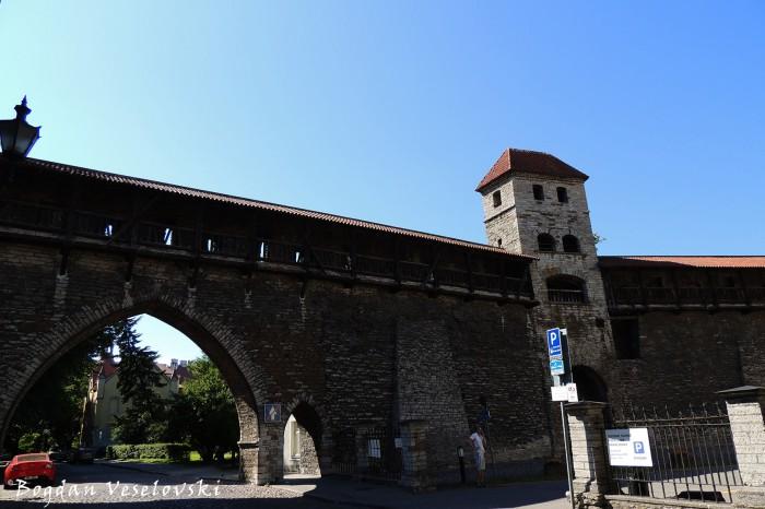 Kloostrivärav (Monastery Gate, Tallin)