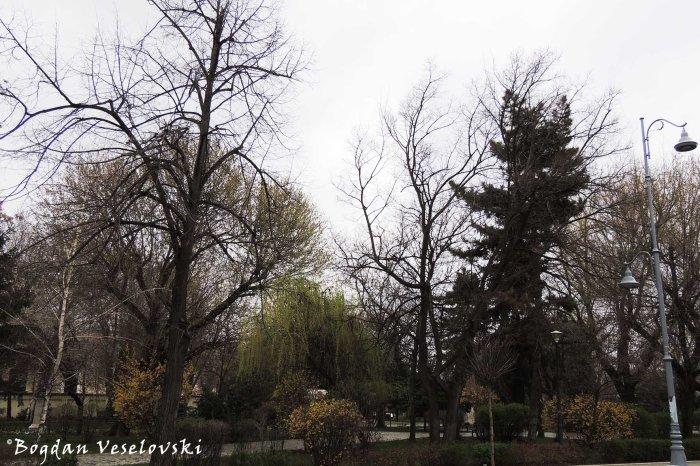 Nicolae Iorga Park, Bucharest