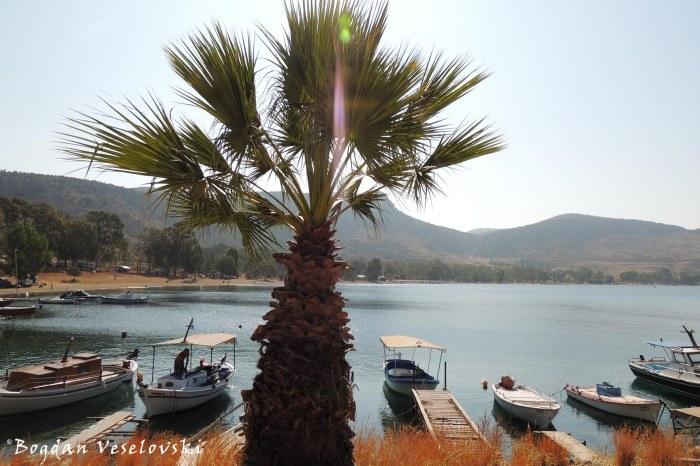 Fishing boats in Karathona beach, Nafplio