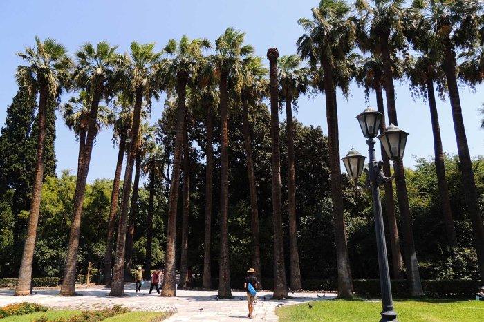 Εθνικός Κήπος (National Gardens, Athens)