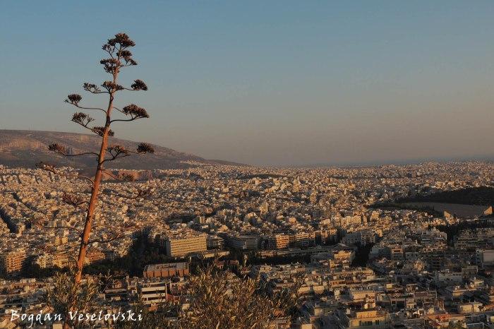 Athens - Panorama