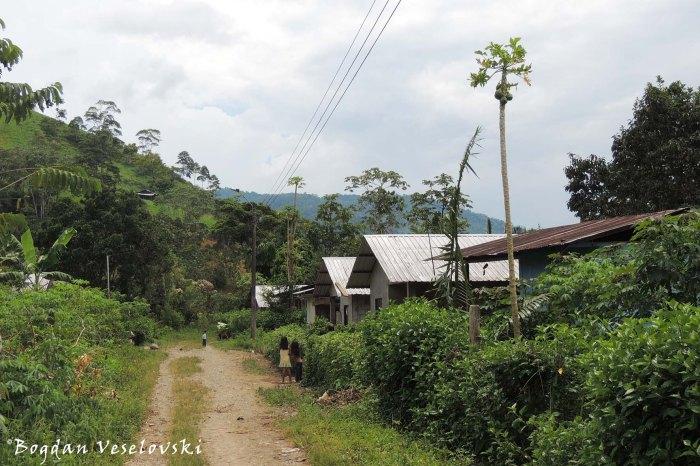 Comunidad de Kumpas