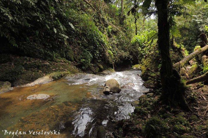 Rio Cumbatza