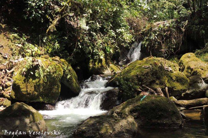 Cascadas de Umpuankas (Umpuankas Waterfalls)