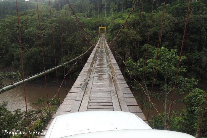 ... and bridges