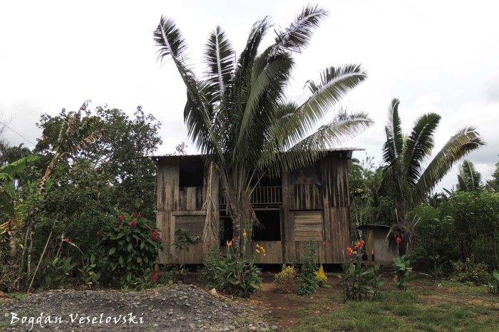 Amazonian house