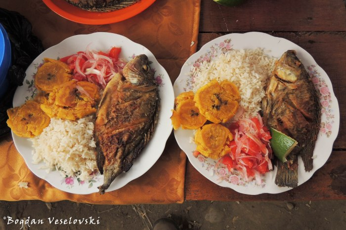 Fish, rice, salad & patacón