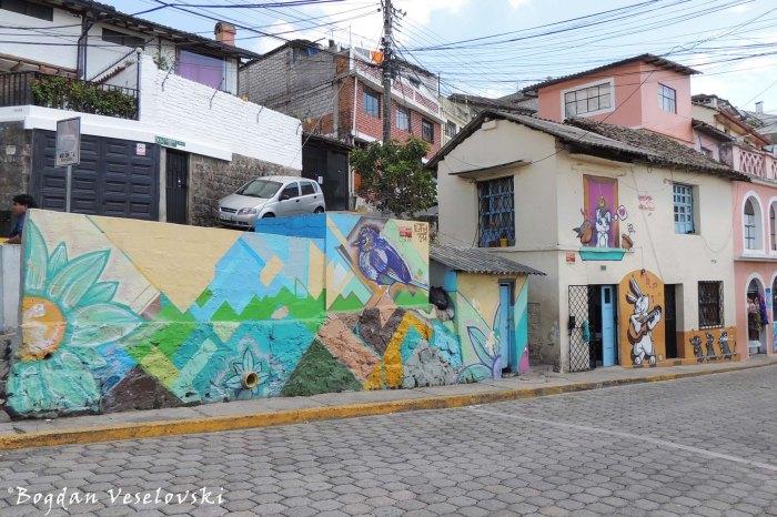 Graffiti on Mariano Calvache Street
