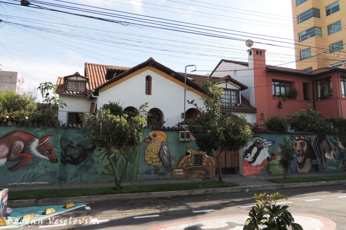 Graffiti in La Floresta
