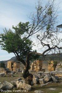 Three among ruins