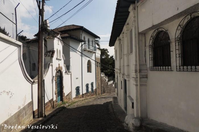 Camino de Orellana