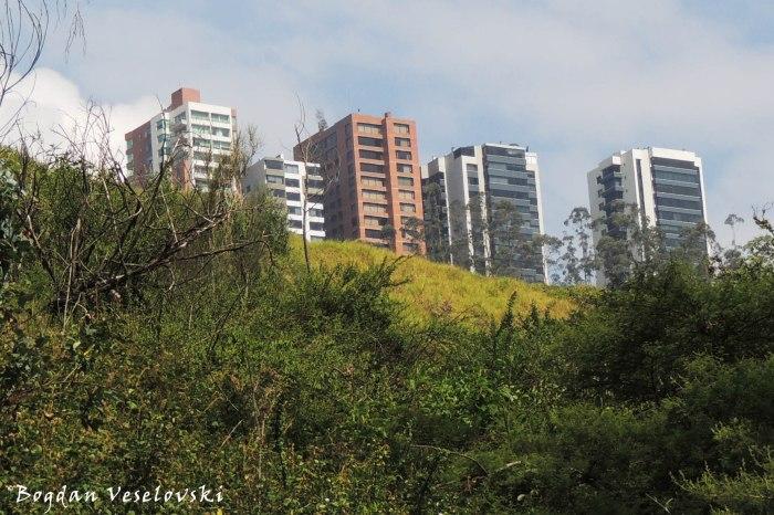 Edificial green