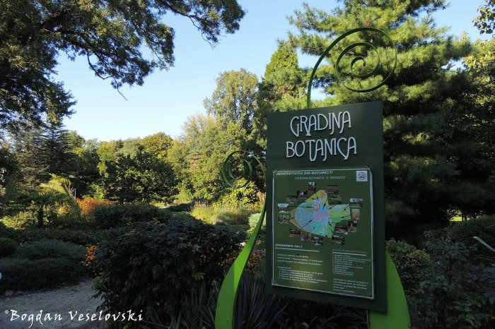 Bucharest Botanical Garden 'Dimitire Brandza'