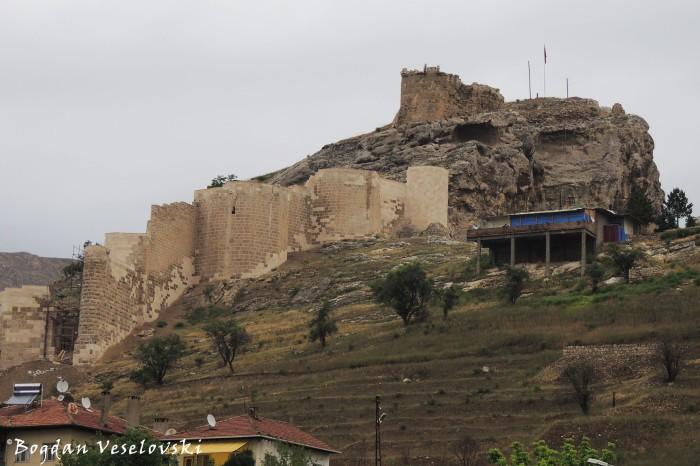 Divriği Castle