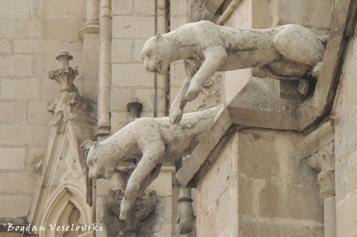 Puma gargoyles